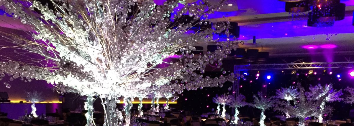 Carousel-Events-parties (5)